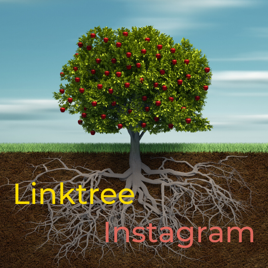 Instagram Linktree Virtual Assistant Ondernemer Hulp